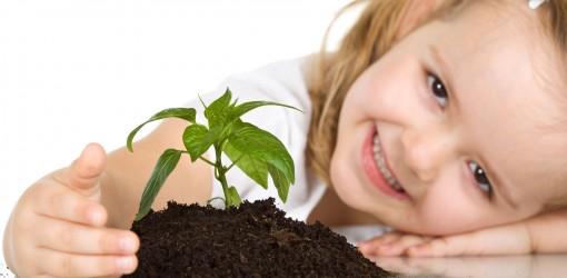 دو کار خوب: آموختن و درختکاری