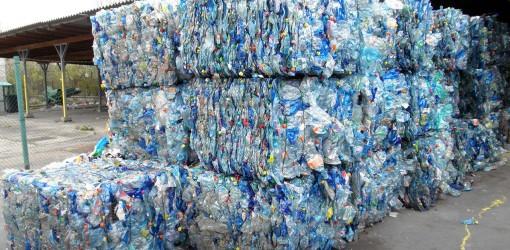 باکتریهای پلاستیکخوار