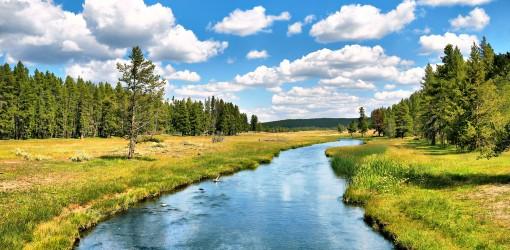 رودخانهای به نام بدن